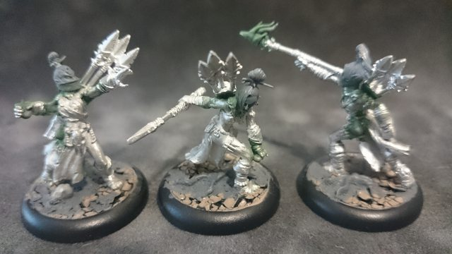 Raider Conversion Feral Nyss